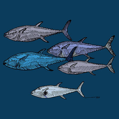 School Of Tuna Fish - Full Color Poster by Karl Addison