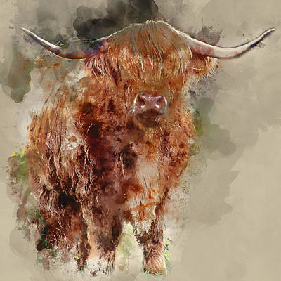 Scottish Highland Cattle Watercolor Portrait 1 - By Diana Van Poster by Diana Van