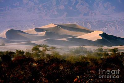 Sculptured Dunes Poster by Varinia Blyth