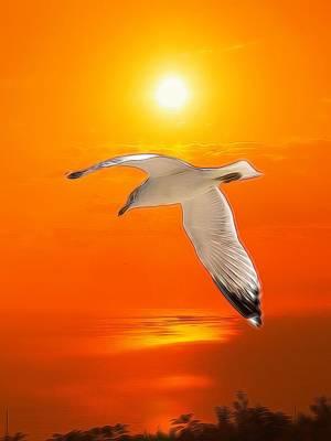 Sea Gull Poster by Athala Carole Bruckner