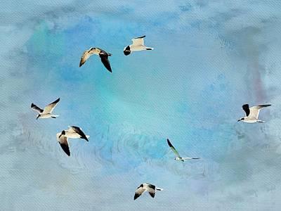 Sea Gulls In Flight Poster by Athala Carole Bruckner