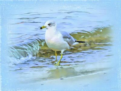 Seagull Poster by Nina Bradica