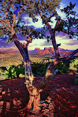 Sedona # 48 - Courthouse And Cathedral Rocks Poster by Allen Beatty