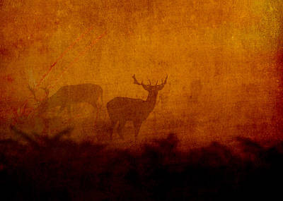 Shadow Deer Poster by Sarah Vernon