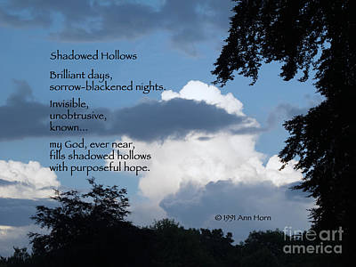 Shadowed Hollows Poster by Ann Horn
