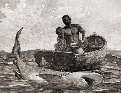 Shark Fishing, Nassau Bar Poster by Winslow Homer