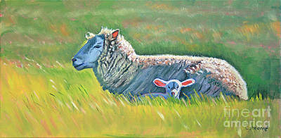 Sheep At Red Hill Farms Poster by Colleen Proppe