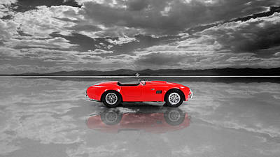 Shelby Cobra 1965 Poster by Mark Rogan