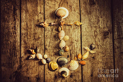 Shell N Anchor Poster by Jorgo Photography - Wall Art Gallery