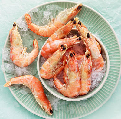 Shrimp On A Plate Poster by Anfisa Kameneva