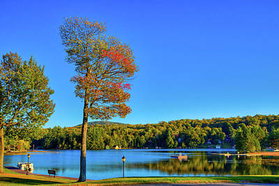 Signs Of Autumn On Old Forge Pond Poster by David Patterson