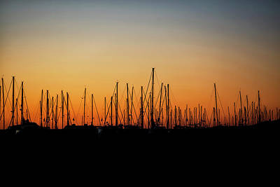 Silhouette Of Sailboats At Sunrise Poster by Susan Schmitz