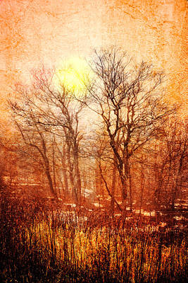 Silhouettes At Sunset Poster by Debra and Dave Vanderlaan