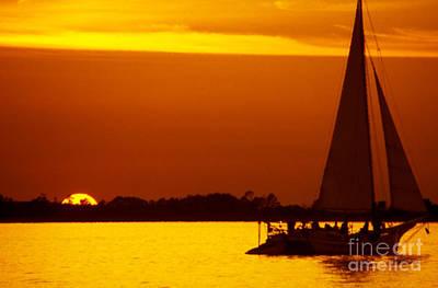 Skipjack Sunset Poster by Thomas R Fletcher