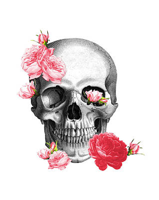 Skull With Pink Roses Framed Art Print Poster by Madame Memento