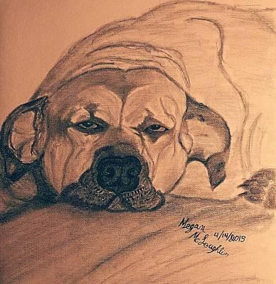 Sleepy Dog Poster by Megan McLoughlin