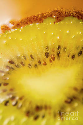 Sliced Kiwi Fruit Floating In Carbonated Beverage Poster by Jorgo Photography - Wall Art Gallery
