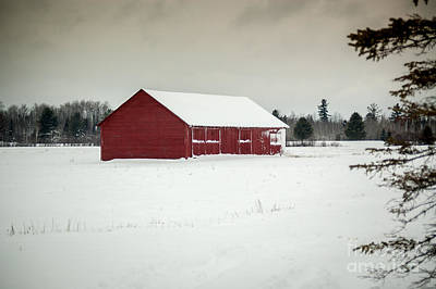 Snow Covered Red Barn Poster by Patrick Shupert