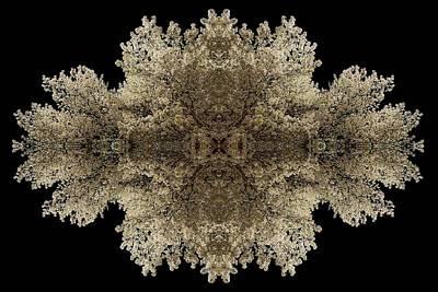 Snowflake Poster by Debra and Dave Vanderlaan