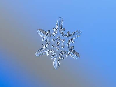 Snowflake Photo - Heart-powered Star Alternate Poster by Alexey Kljatov