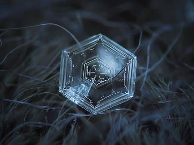Snowflake Photo - Hex Appeal Poster by Alexey Kljatov