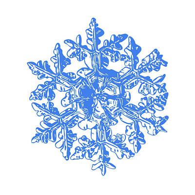 Snowflake Vector - Gardener's Dream White Version Poster by Alexey Kljatov