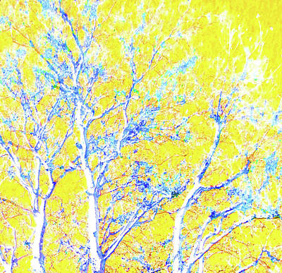 Snowy Blue Tree On Lemon			 Poster by Ann Johndro-Collins