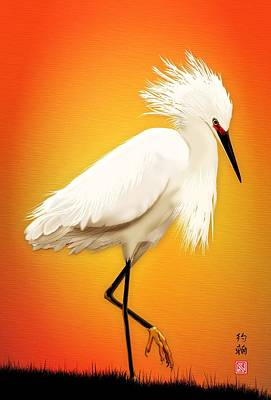 Snowy Egret At Sunset Poster by John Wills