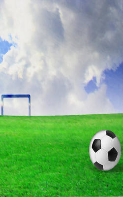 Soccer Ball On The Green Field Poster by Lanjee Chee