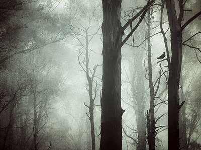 Solitude Poster by Amy Weiss