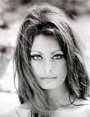Sophia Loren Poster by Georgia Fowler