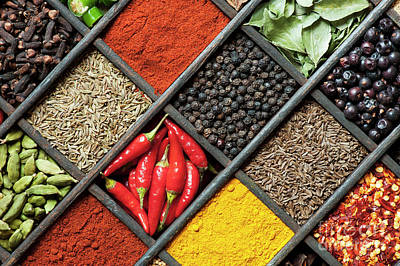 Spices Poster by Tim Gainey