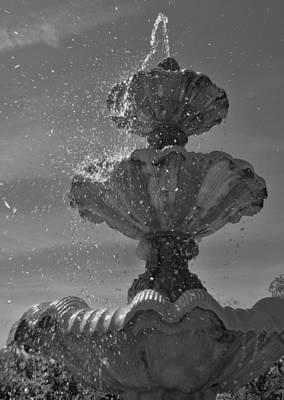Splash I Poster by Anna Villarreal Garbis