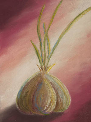 Sprouted Garlic Poster by Cheryl Albert