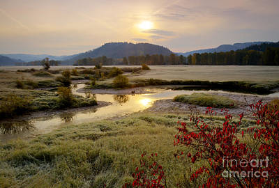St. Joe River Valley Poster by Idaho Scenic Images Linda Lantzy