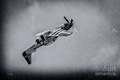 Stallion 51 - P-51d Mustang - Crazy Horse  Poster by Rene Triay Photography