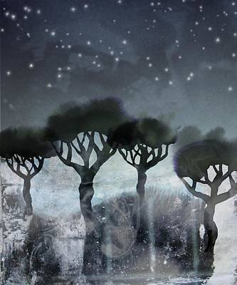 Starlit Marsh Poster by Varpu Kronholm