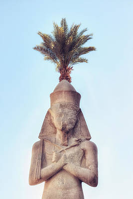 statue of Ramses Poster by Joana Kruse