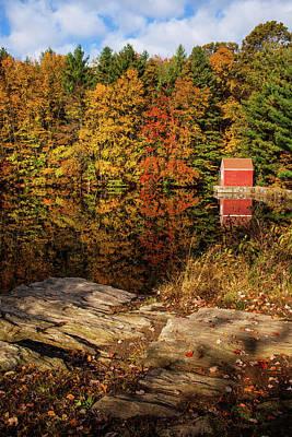Stewart Woods Autumn Poster by Karol Livote