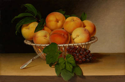 Still Life - Basket Of Peaches Poster by Mountain Dreams