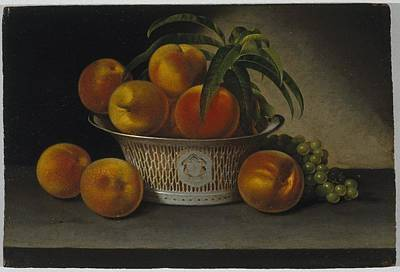Still Life With Peaches Poster by MotionAge Designs