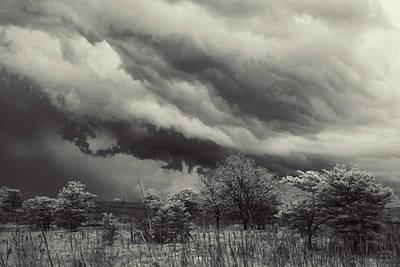 Stillness Of The Storm Poster by Toni Hopper