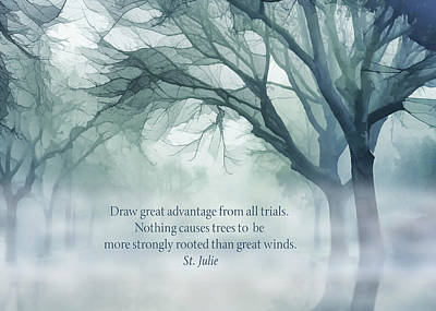 Strongly Rooted Poster by Terry Davis