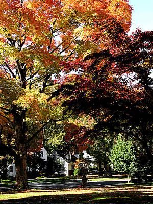 Suburban Autumn Poster by Susan Savad