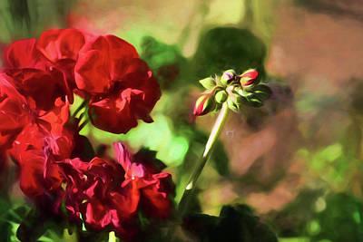 Summer Garden 3 Poster by Bonnie Bruno