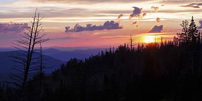 Sun Over Cedar Poster by Chad Dutson