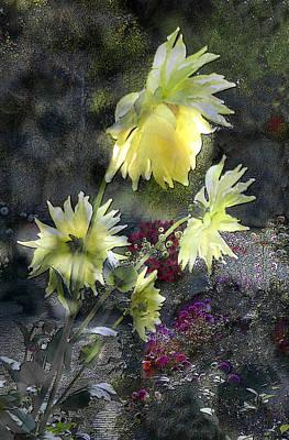 Sunflower Dream Poster by Tom Romeo
