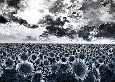Sunflowers Filed 2 Poster by Bekim Art