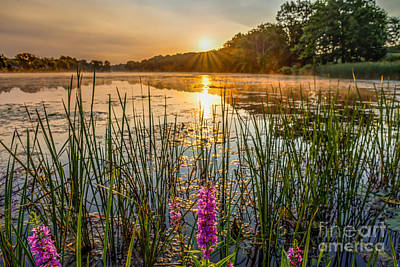 Sunrise Kent Lake Poster by Patrick Shupert