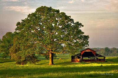 Sunrise Oak 2 The Red Barn Art Poster by Reid Callaway